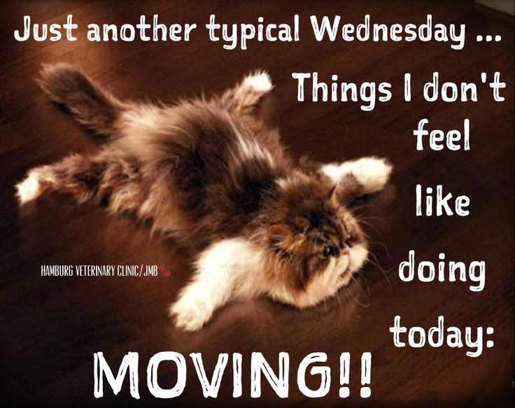 Another Wednesday Pictures, Photos, and Images for ...  Another Wednesd...
