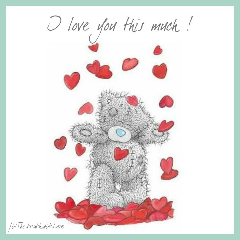 I Love You More Than Quotes: I Love You This Much! Pictures, Photos, And Images For