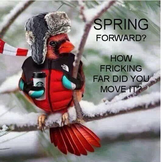 [158655-Spring-Forward]