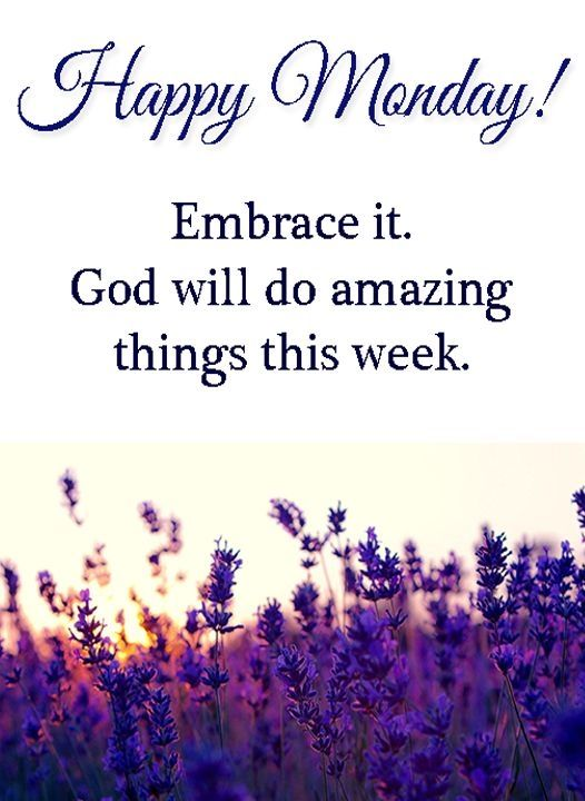 Happy Monday Embrace It Pictures Photos And Images For