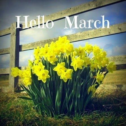 Hello March Pictures Photos And Images For Facebook Tumblr Pinterest And Twitter