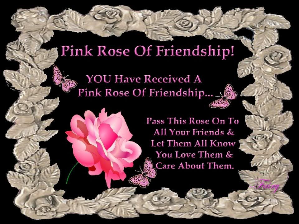 Pink Rose Of Friendship Pictures, Photos, and Images for