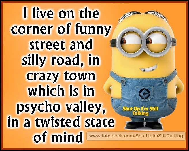 Pinterest Funny Crazy Quotes: I Live In The Corner Of Pictures, Photos, And Images For