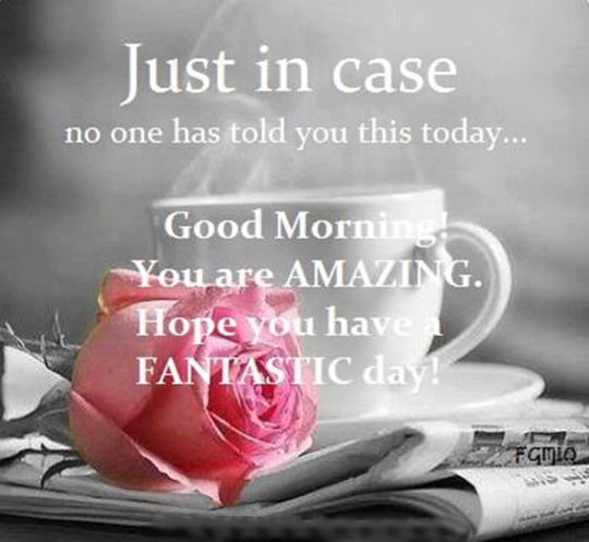 You Re Amazing Funny: Good Morning You Are AMAZING! Pictures, Photos, And Images