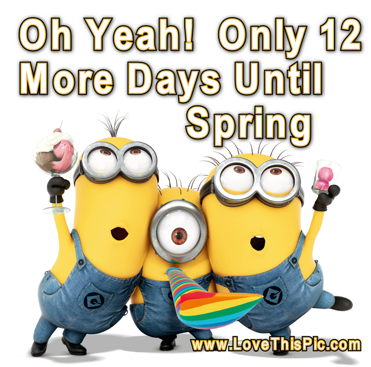 12 Days Until Spring Pictures, Photos, and Images for ...