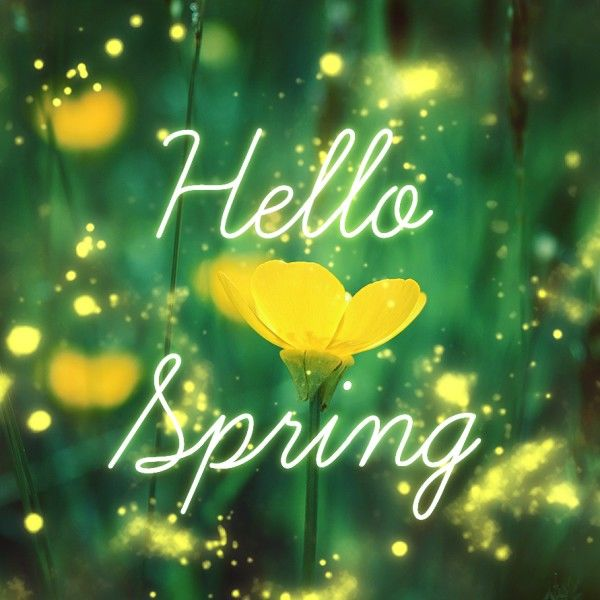 Hello spring pictures photos and images for facebook tumblr pinterest and twitter - Happy spring day image quotes ...