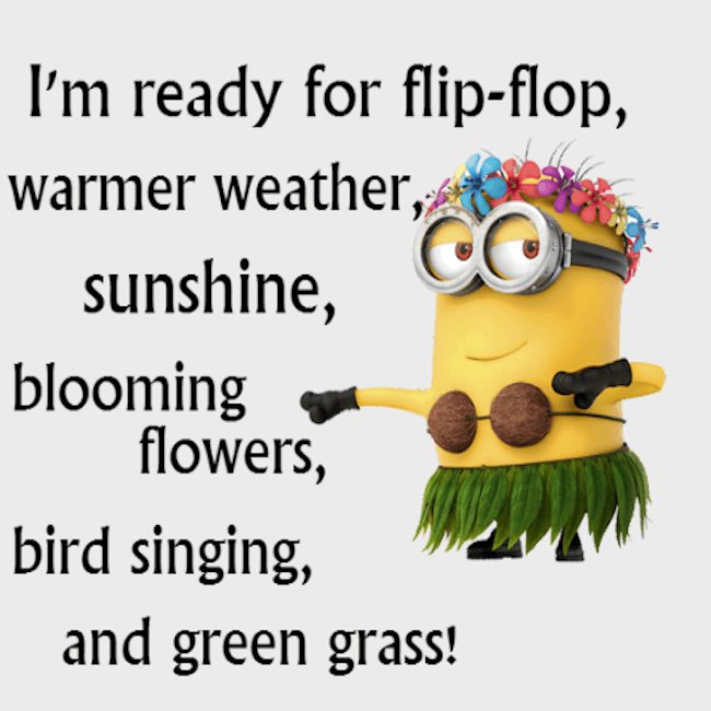 Image result for ready for spring