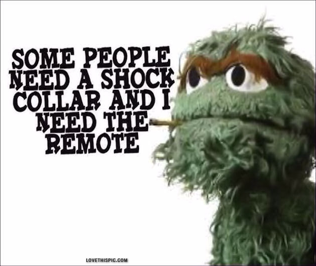 Sesame Street Costumes together with Some People besides Tilted tens odd phobias 10 pics furthermore Oscar The Grouch Sesame Street in addition 939074 Bertstrips. on oscar grouch quotes