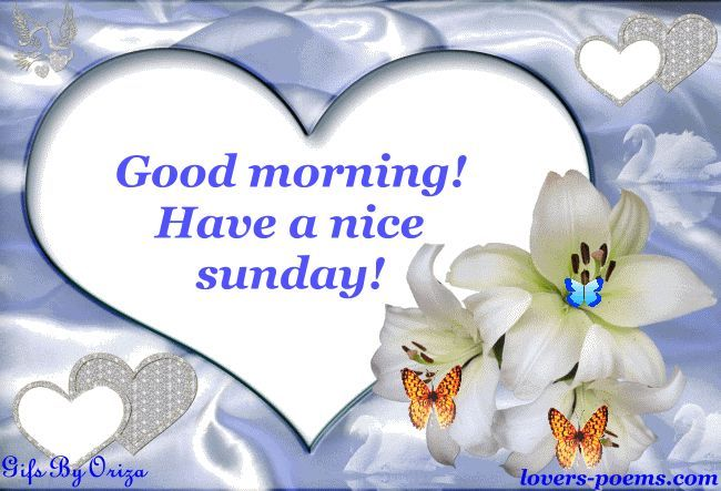Good Morning Have A Nice Sunday Pictures, Photos, And