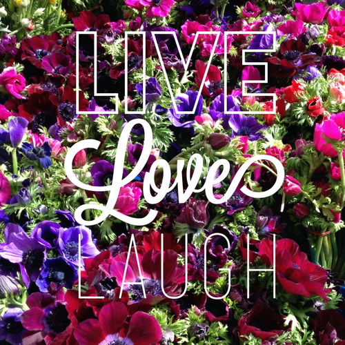 Live Love And Laugh Quotes: Live Laugh Love Pictures, Photos, And Images For Facebook