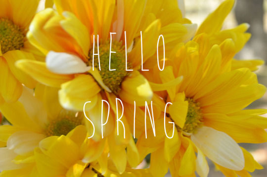 Yellow hello spring flowers pictures photos and images for yellow hello spring flowers mightylinksfo