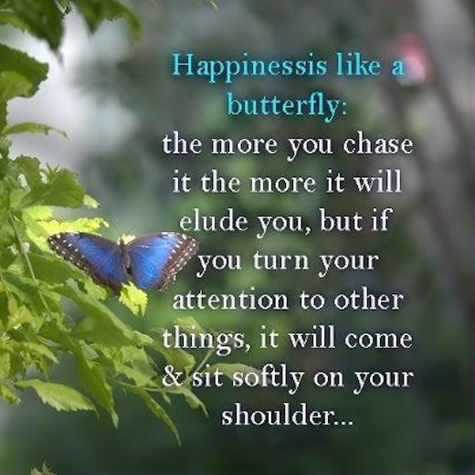 Happiness Is Like A Butterfly Pictures, Photos, And Images