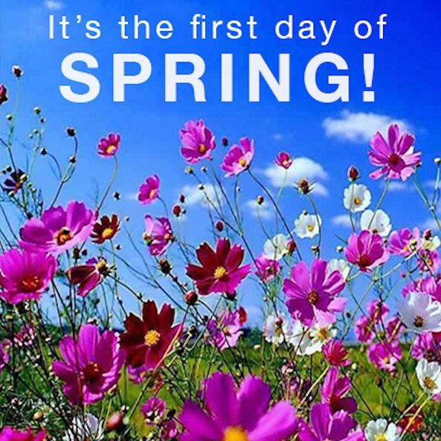 Image result for happy first day of spring free image