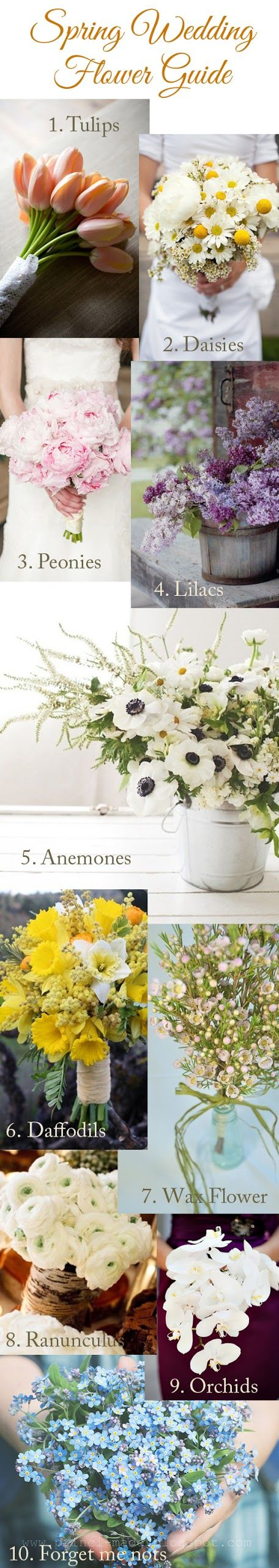 Spring Wedding Flower Guide Pictures Photos And Images For
