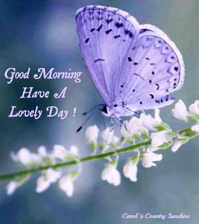 Image result for have a lovely day images