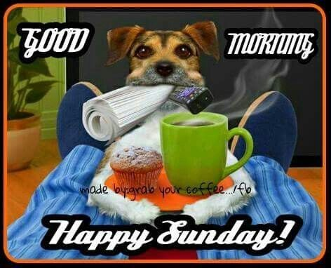 Image result for good morning happy sunday blingee