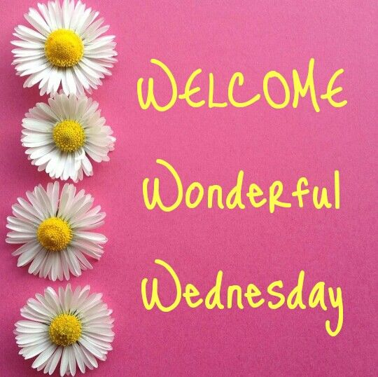 Welcome Wednesday Photos