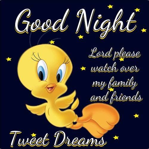 Funny Sweet Dreams Quotes: Goodnight Tweety Bird Pictures, Photos, And Images For