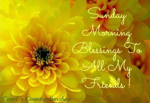 Sunday Morning Blessings Pictures, Photos, and Images for ...