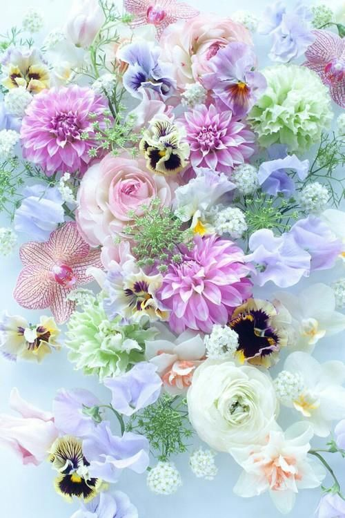 Pretty pastel flowers pictures photos and images for for Pastel colored flower arrangements