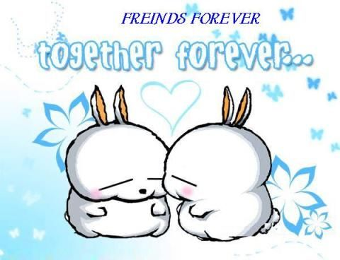 friends forever together forever pictures, photos, and images for