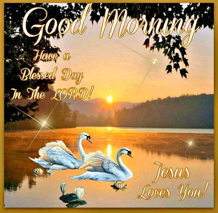 Good Morning Jesus Loves You Pictures Photos And Images For