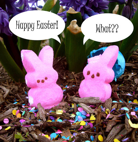 Funny Happy Easter Quotes: Eating Easter Candy Pictures, Photos, And Images For