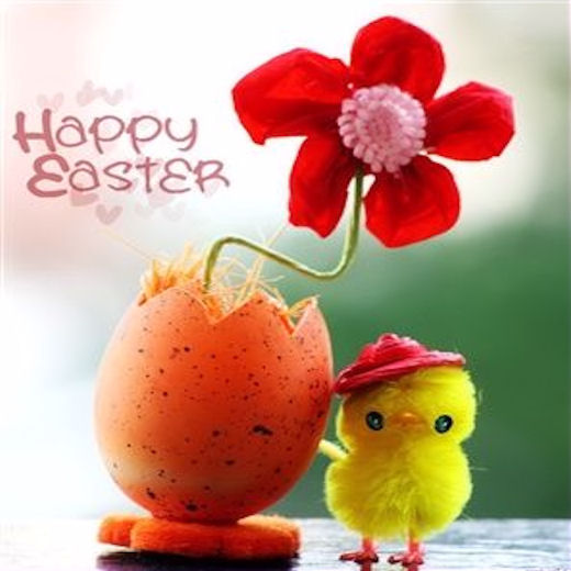 Image result for Happy Easter Cute