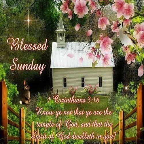 Blessed Sunday Pictures, Photos, And Images For Facebook