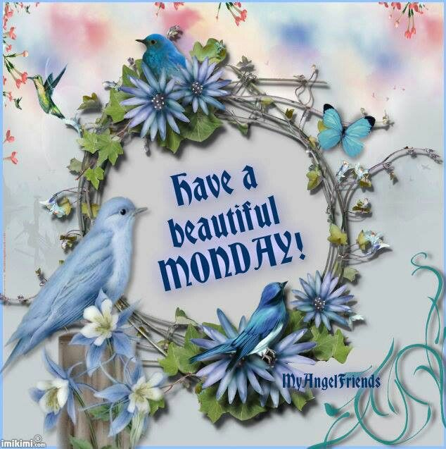 Image result for have a beautiful monday pic