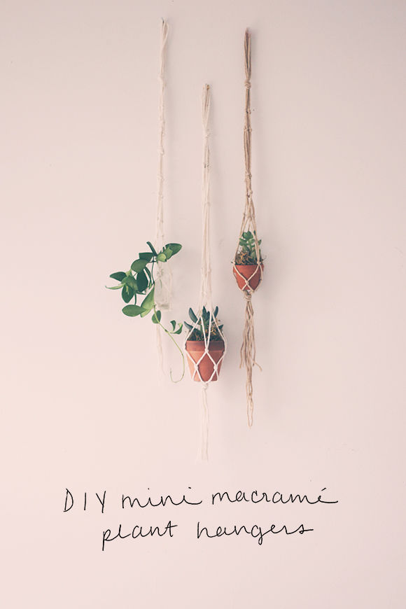Diy Mini Macrame Plant Hangers Pictures Photos And