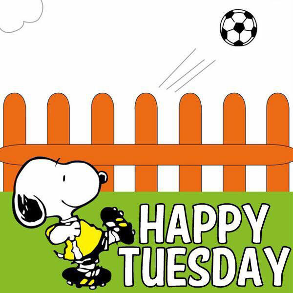Good Morning My Love Happy Tuesday : Snoopy happy tuesday pictures photos and images for