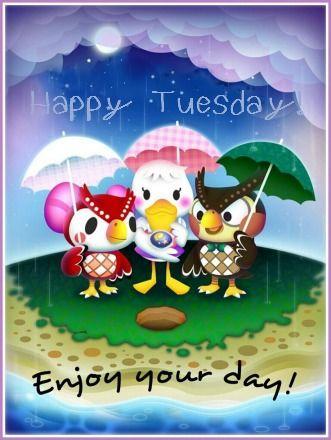 Rainy Tuesday Quotes Quotesgram