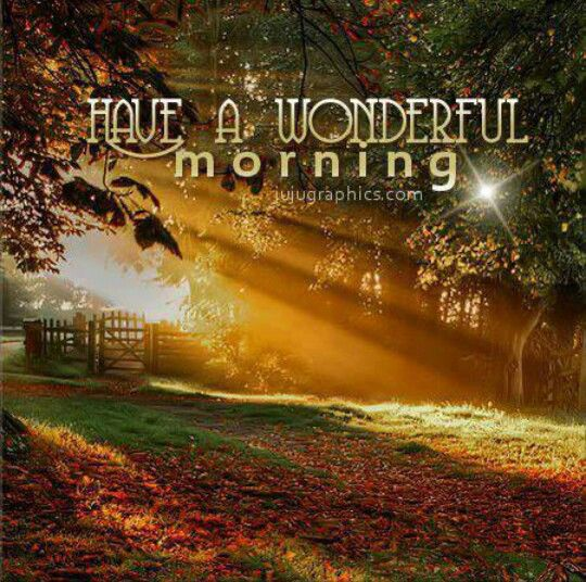 Have A Wonderful Morning Pictures Photos And Images For