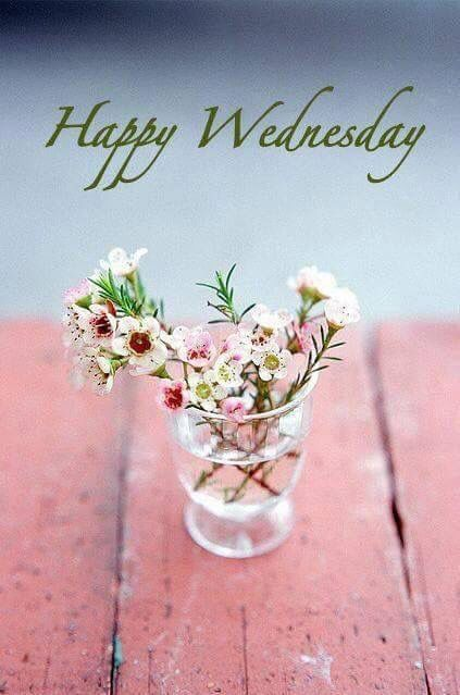 211+ Good Morning Wednesday Images Greetings Picture For ... |Wednesday Flowers