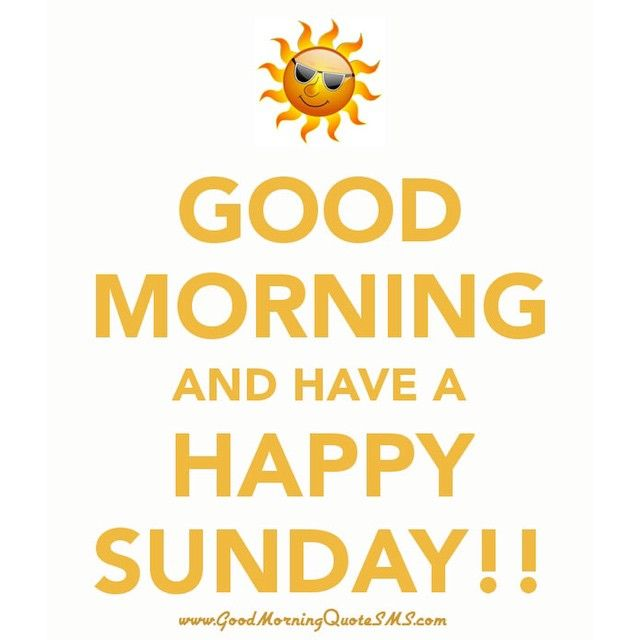 Good Morning Sunday New : Good morning sunday pictures photos and images for