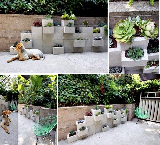 Cinder Block Garden Pictures Photos And Images For Facebook Tumblr Pinterest And Twitter