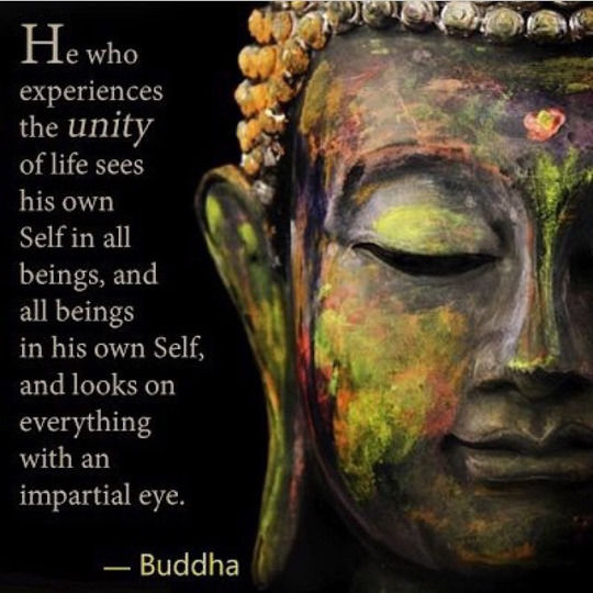 Nature Of Human Beings In Buddhism