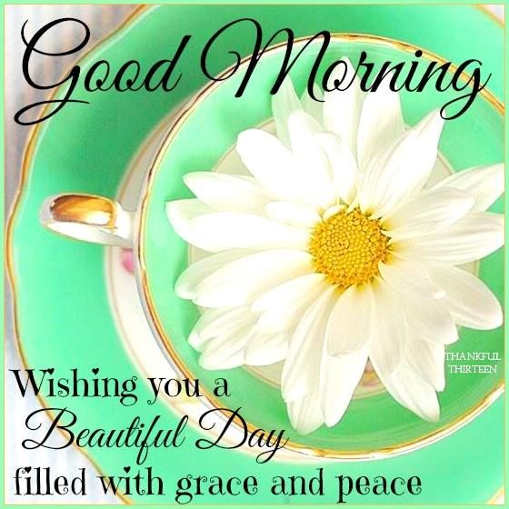 Image result for good morning beautiful day images