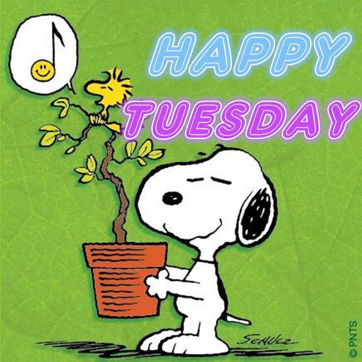 Snoopy Happy Tuesday Quote Pictures, Photos, and Images for ...