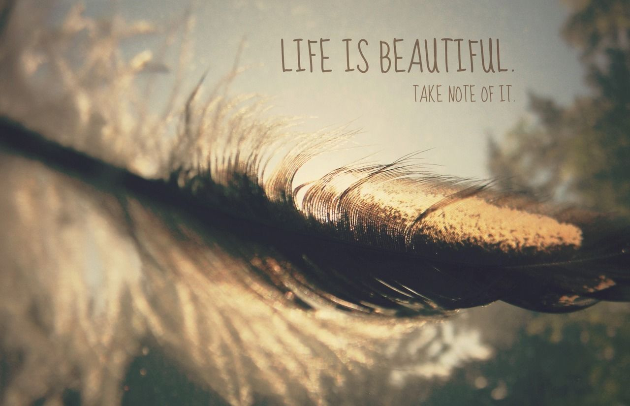 Life Is Beautiful Quotes Life Is Beautiful Take Note Of It Pictures Photos And Images