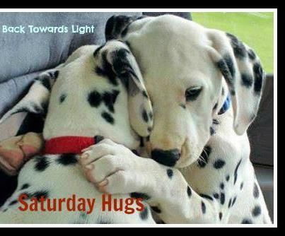 Image result for saturday hugs pinterest