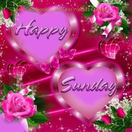 Happy Sunday Pictures, Photos, and Images for Facebook ...