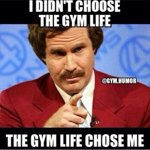 Funny Gym Pics Tumblr