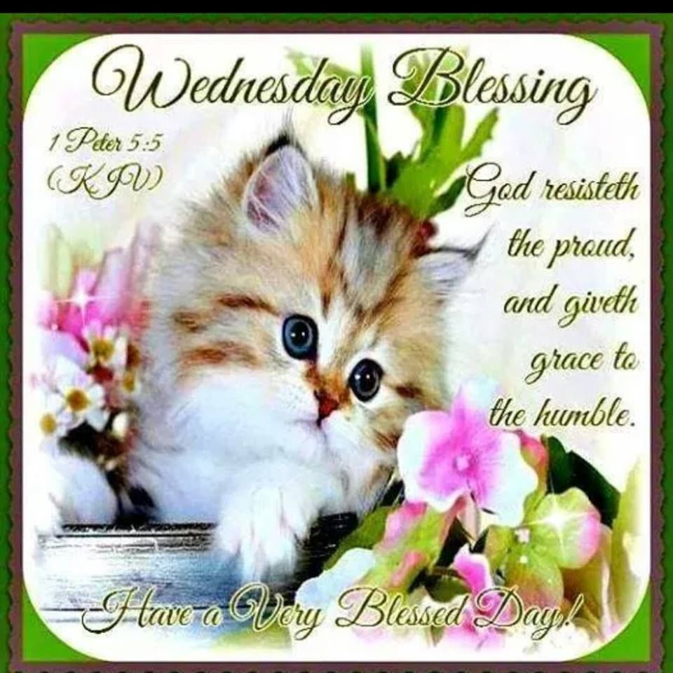 Blessed Day Quotes From The Bible: Wednesday Blessings With Bible Verse Pictures, Photos, And