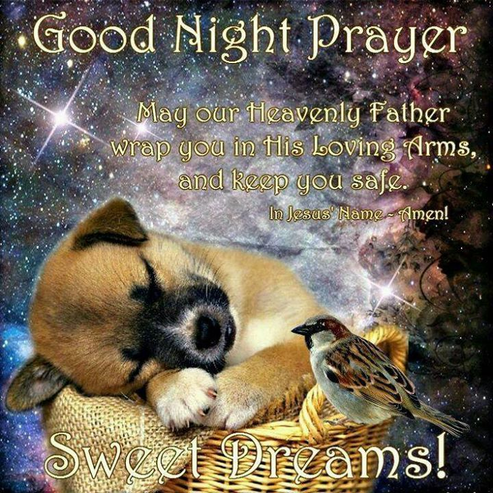 Cute Good Night Prayer Pictures, Photos, And Images For