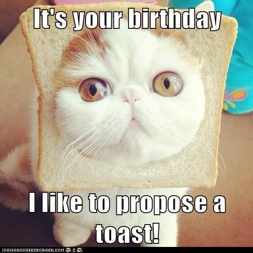 its your birthday midget