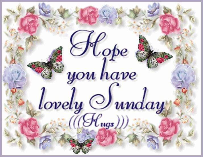 free valentines day greetings quotes - Have A Lovely Sunday s and for