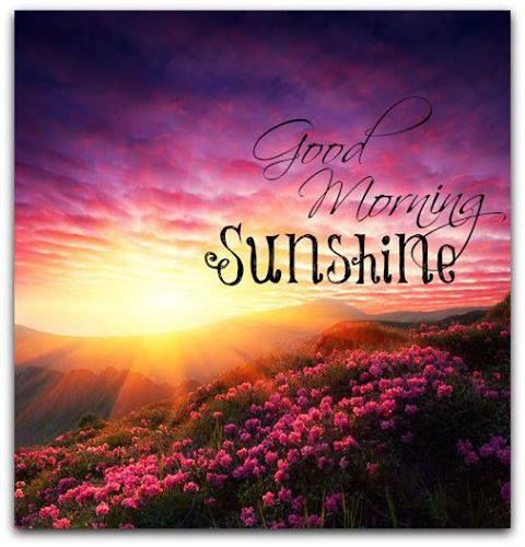 Good Morning Sunshine Facebook : Good morning sunshine pictures photos and images for