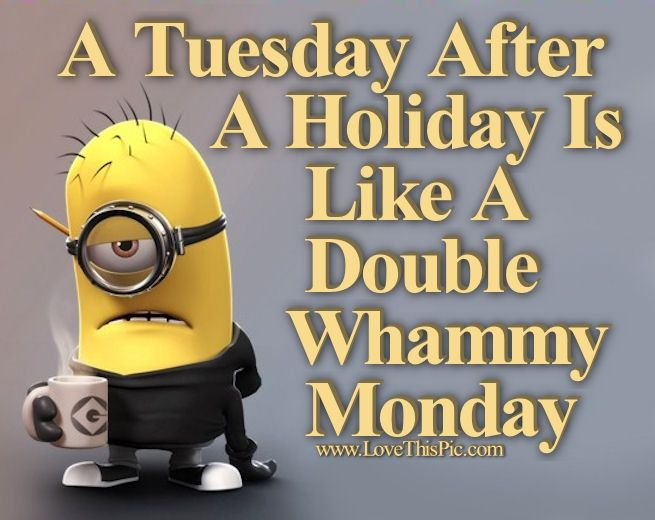 A Tuesday After A Holiday Is Like A Double Whammy Monday